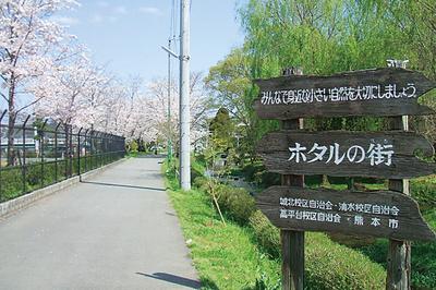pk_hakenomiya1.jpg