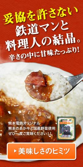 辛うま~い!目の覚める美味しさ!熊本電鉄カレー